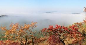 Das Saaletal im Nebel