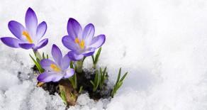 Jenaer Osterfest im Schnee