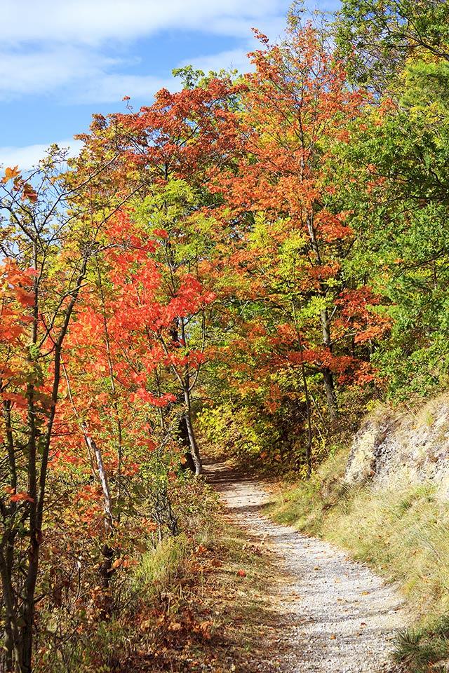 Herbstwanderung in Jena