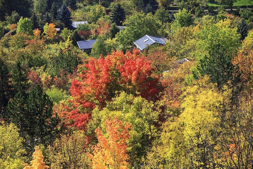 Jenaer Herbst