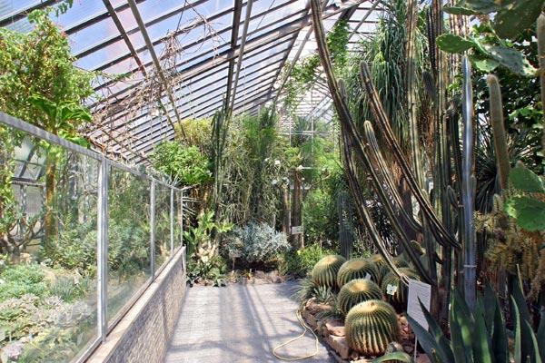 Der Botanische Garten In Jena