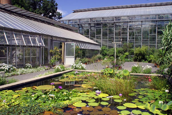 Botanischer garten  Der Botanische Garten in Jena